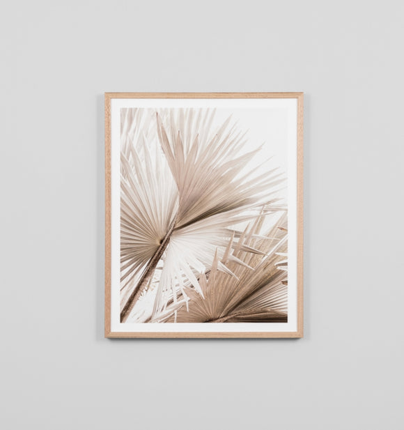 Middle of Nowhere - Natural Palm 2 Framed Print