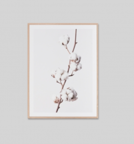Middle of Nowhere - White Cotton Frame Print