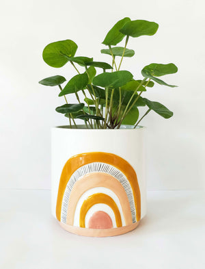 Woodstock Rainbow Planter Mustard Pink Small