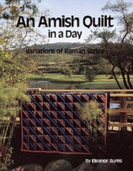 An Amish Quilt in a Day
