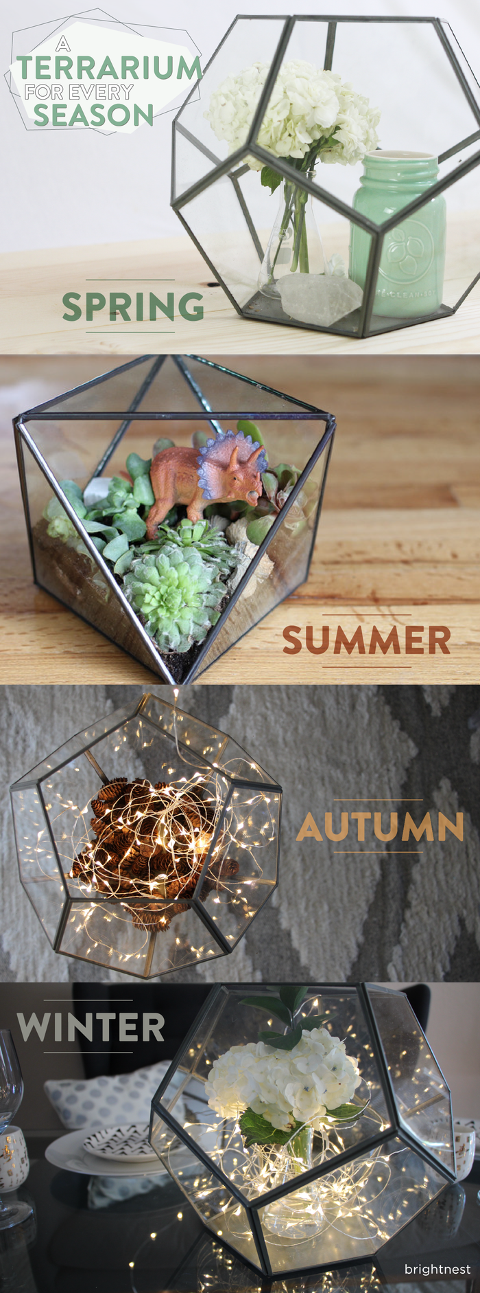 Seasonal terrarium