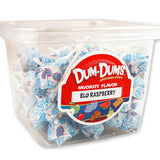 Dum Dum Pops - Blue Raspberry 1lb Tub