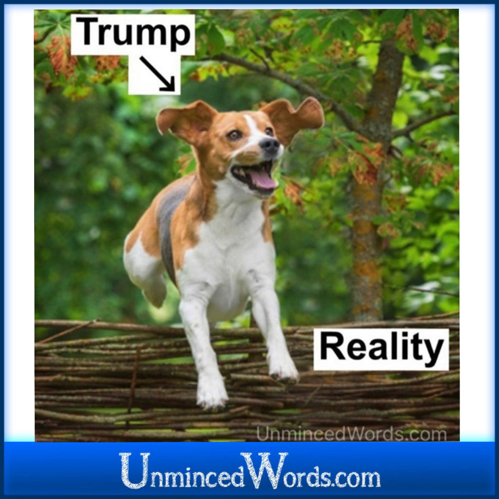 Trump leaping over the fence of reality IS America's reality.