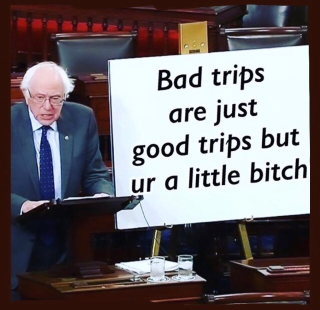 Bernie Sanders Drug Wisdom is my spirit guide