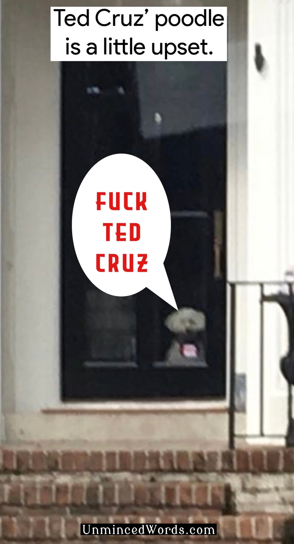 Ted Cruz' poodle is a little upset.