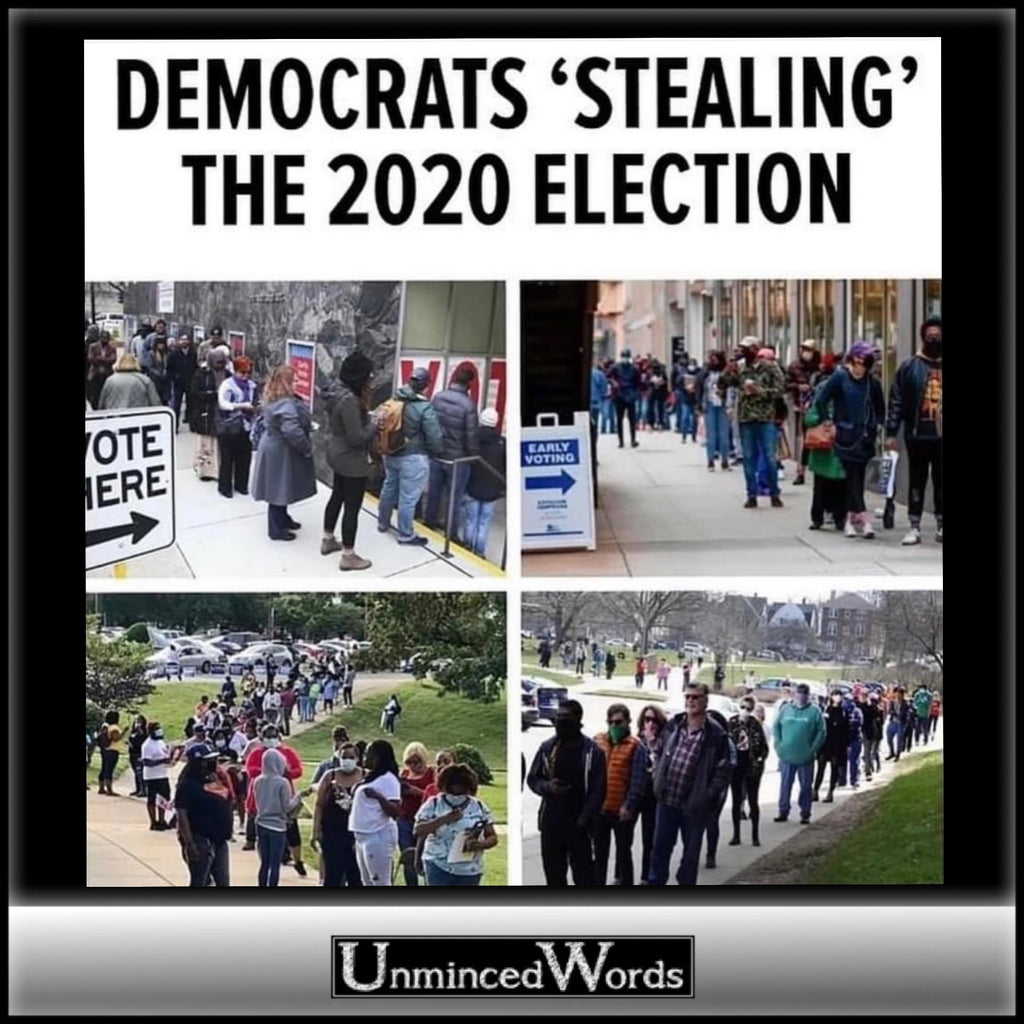 "Images of Democrats ""Stealing"" the 2020 Election"