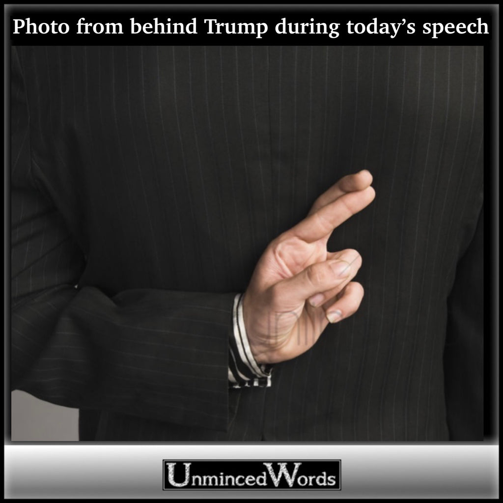 ‪PHOTO TAKEN FROM BEHIND TRUMP DURING TODAY'S SPEECH