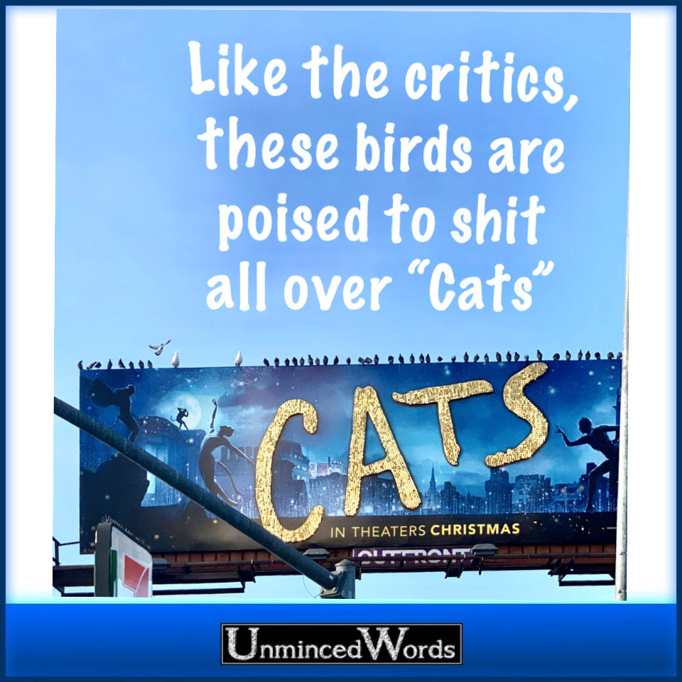 Like the critics, these birds are poised to shit all over cats