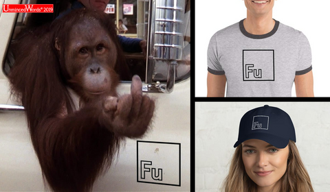 Fu - The New Periodic Table Element