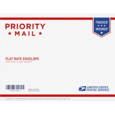 Priority Mail Letter Flat Rate Envelope 12.5