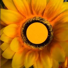 Load image into Gallery viewer, Vivid Yellow pigmented shadow sitting on a sunflower