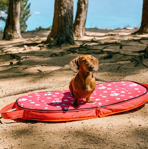Pink Travel Doggo Bed