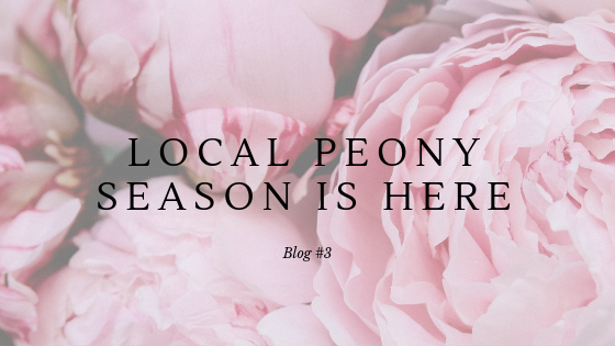 Peony Season is here.