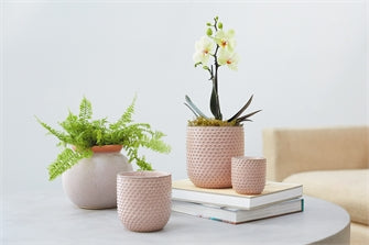 Pottery - Everly Pot