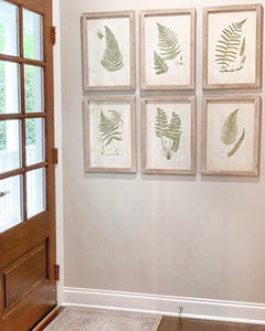 Framed Wall Decor with Ferns