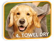 Pet Fresh Wash Mitts