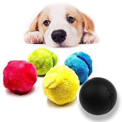 Magic Rolling Ball Toy - FlareTrends