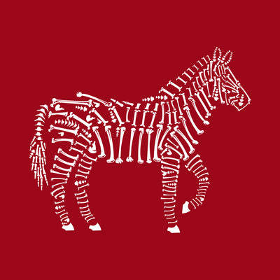 Zebra Bones printed on red Unisex premium tee from Teexpression