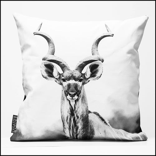 Cushion Cover 60 BW 10