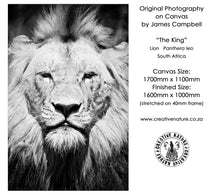 Large Format Canvas - The King