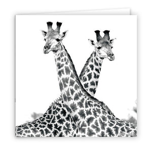 Large Greeting Card GC166 Giraffe