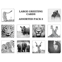 Special Pack 2 - Large Greeting Cards - 10 Assorted
