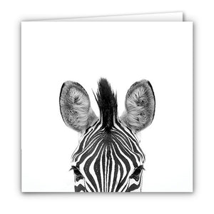 Small Greeting Card SGC102 Zebra