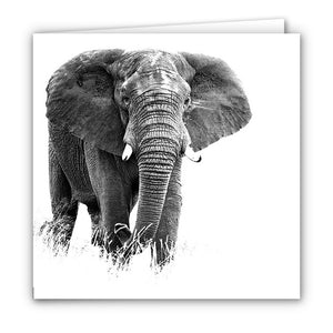 Small Greeting Card SGC118 Elephant