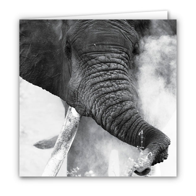 Small Greeting Card SGC166 Elephant