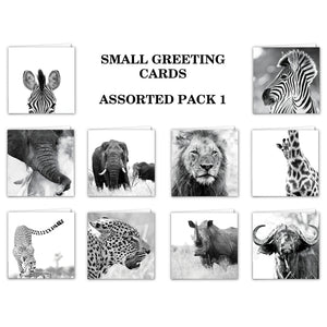 Special Pack 1 -Small Greeting Cards - 10 Assorted