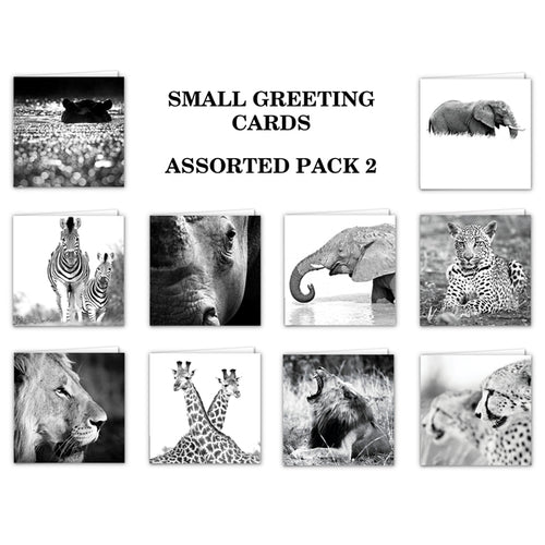 Special Pack 2 - Small Greeting Cards - 10 Assorted