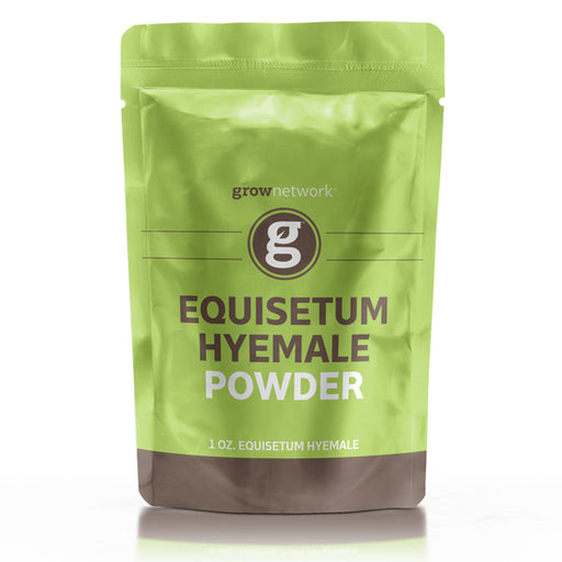 Equisetum Hyemale Powder