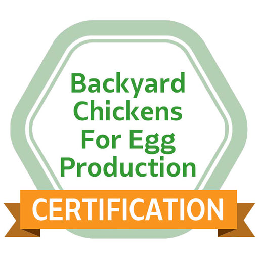 Backyard Chickens for Egg Production eCourse