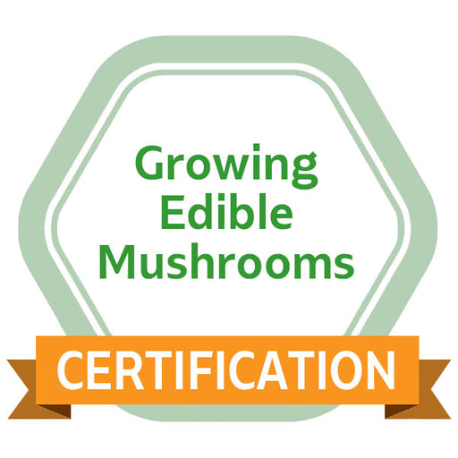 Growing Edible Mushrooms eCourse