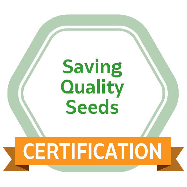 Saving Quality Seeds eCourse