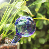Self Watering Glass Globes