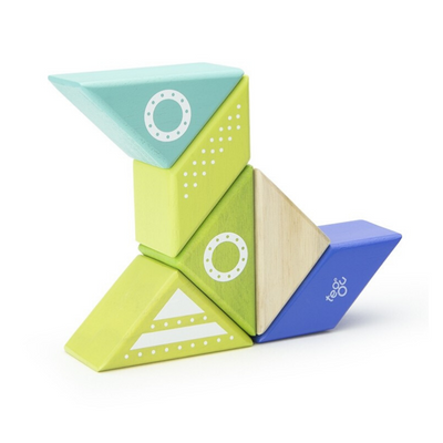 Tegu Magnetic Space Ship Travel Pal