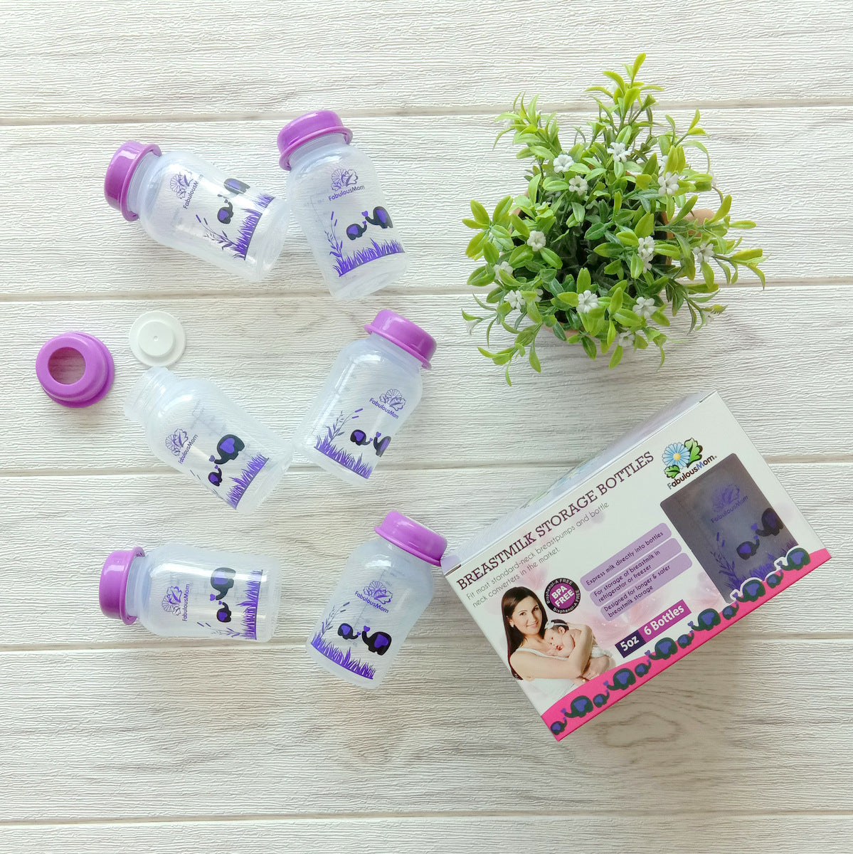 Fabulous Mom Breastmilk Storage Bottle 6s