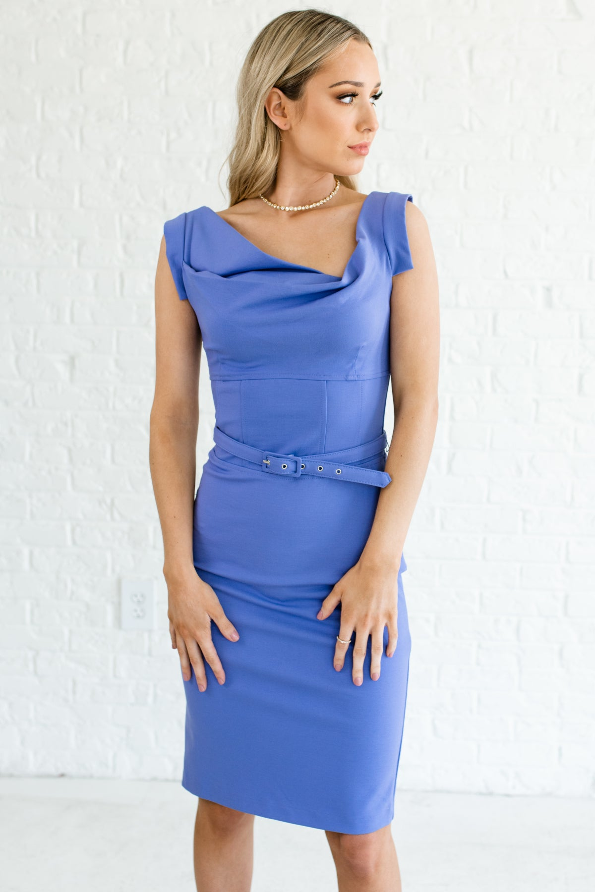 Fitted Knee Length Blue Dress
