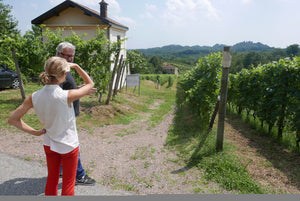 Piemonte - Past and Present