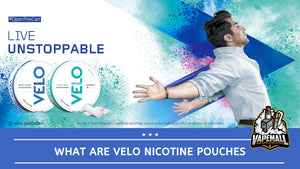 PTC Launches VELO Nicotine Pouches In Pakistan