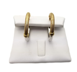 14k 2-tone Earrings