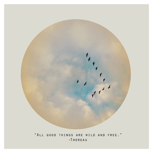 All Good Things (Circle) - Fine Art Photograph