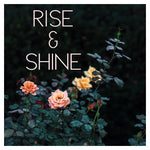 Rise & Shine (Rose) - Fine Art Photograph