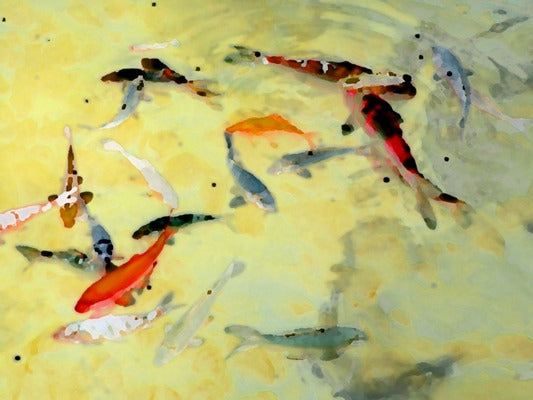 Yellow Koi 5x7- Matted- Friday Outlet