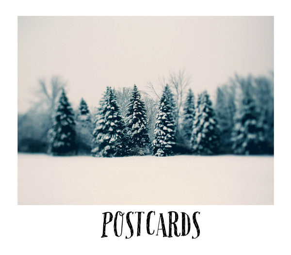 Winter and Woods - Postcard