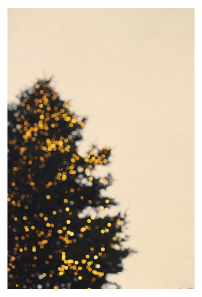 Merry and Bright - Fine Art Photograph