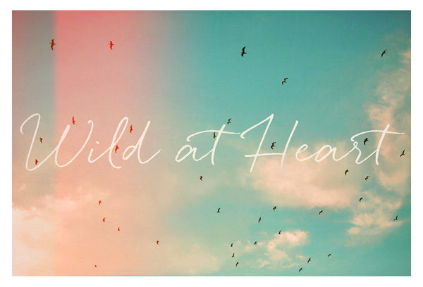 Wild At Heart - Fine Art Photograph