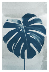 Blue Monstera #4 - Fine Art Photograph