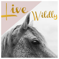 Live Wildly (Horse) - Fine Art Photograph